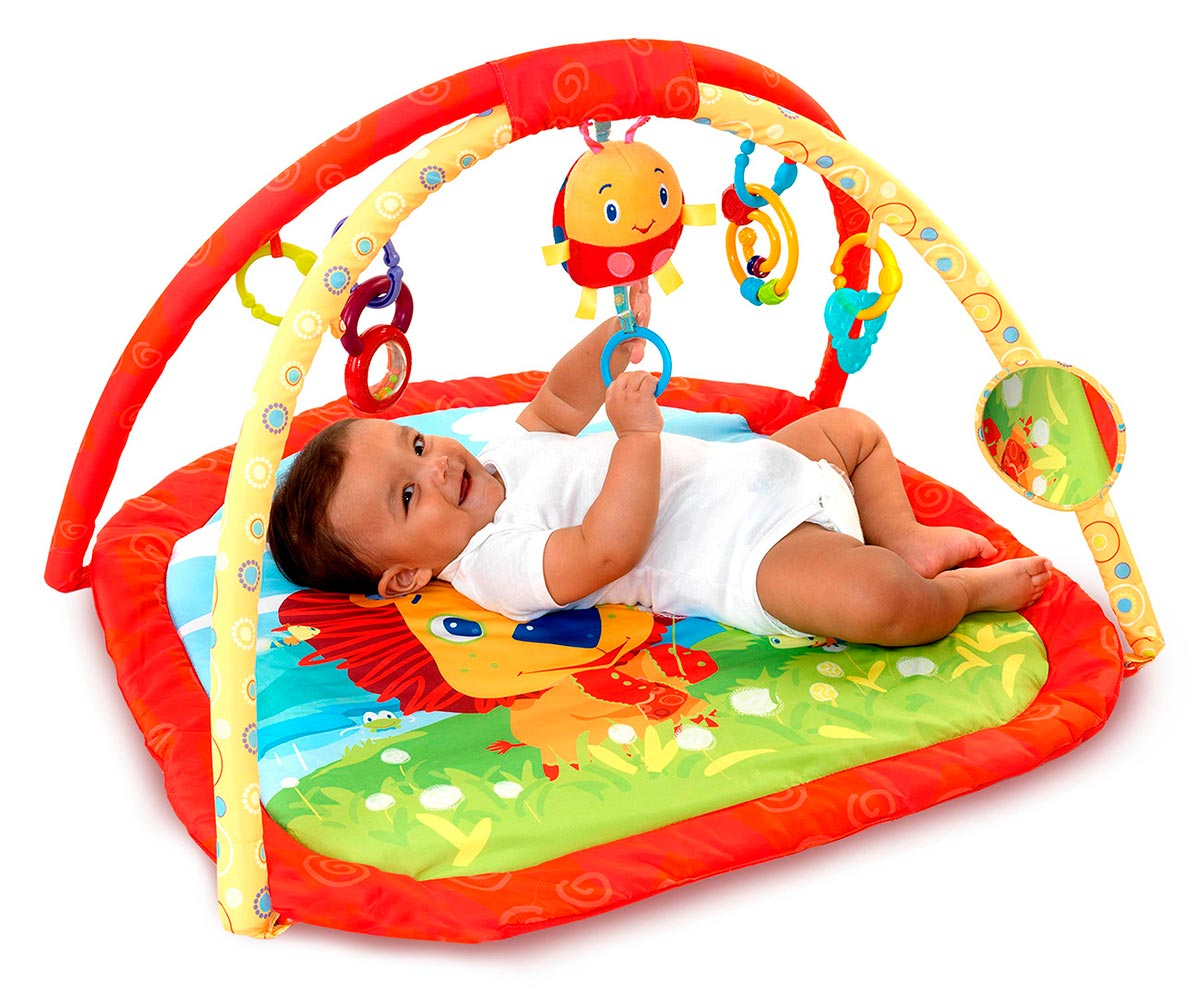 Gimnasio panama baby rentals for Gimnacio o gimnasio